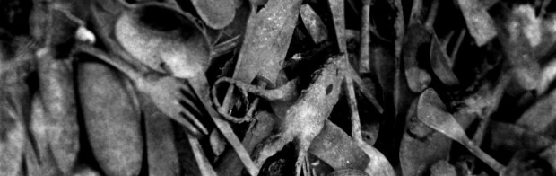 cropped-Birkenau.jpg