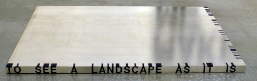cropped-Roni-Horn-Thicket-no.-1-1989-1990-Alluminio-su-plastica-Tate-Gallery-Collection..jpg