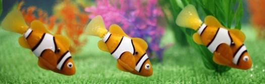 cropped-fish.jpg