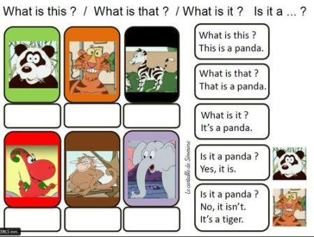 "Flashcards Gogo : vidéo 5 ""Is that a tiger ?"""