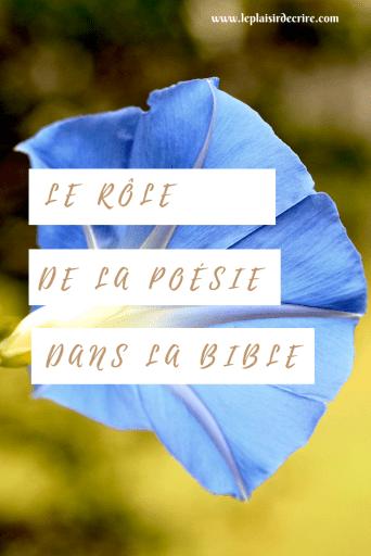 Les livres poétiques nous interpellent tous parce qu'ils décrivent des sentiments qui sont tous des sentiments humains qui nous sont proches et qu'on peut comprendre. #bible #poésie #citationbible #citation #versetbiblique #Dieu #foi #Jesus #blogue #bloguechretien #leplaisirdecrire