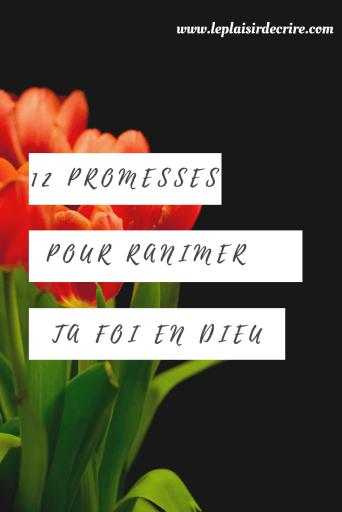Parfois, il nous semble recevoir un silence assourdissant à nos prières. Dans ces situations, il nous faut à tout prix nous fier au caractère de Dieu, répéter ses promesses pour ranimer notre foi. #promessesdivines #promessesdedieu #Dieu #Bible #Jesus #versets #citationsbiibliques #leplaisirdedcrire