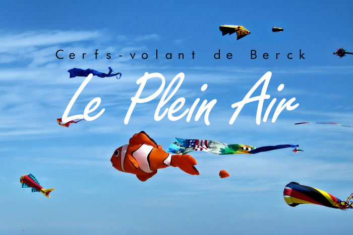 25e Rencontres Internationales De Cerfs Volants Le Plein Air