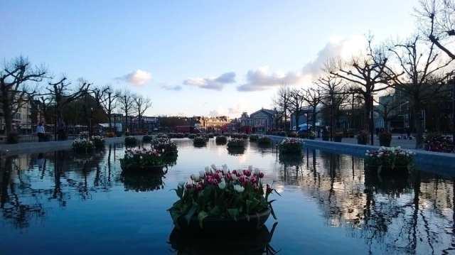 Lago Amsterdam