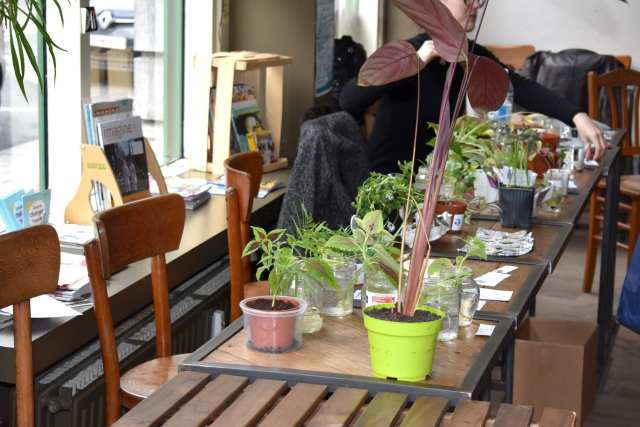 Plant Swap - Seeds Brussels - Le Plume visione tavolo