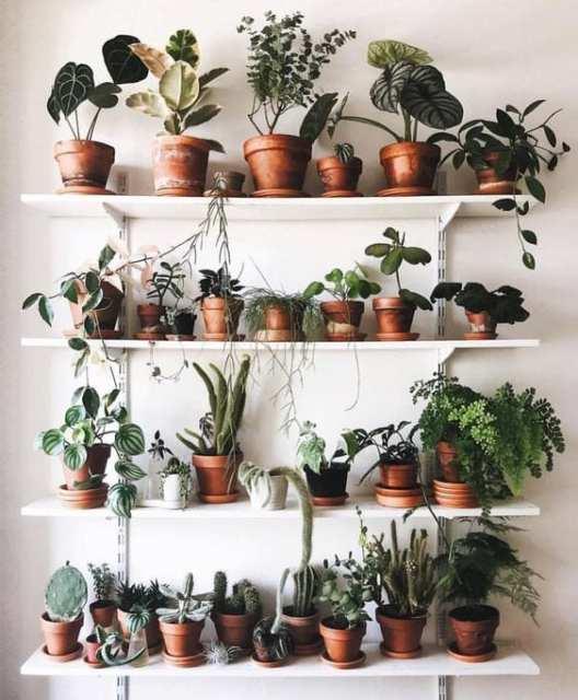 4 - Indoor garden - Le Plume