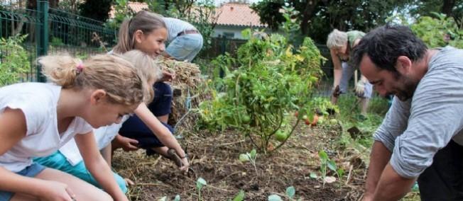 Les animaux de la ferme tout comme le potager font leur arrivée à l'école à La Rochelle.