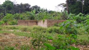 Les travaux de construction ont été longtemps arrêtés sur le site.