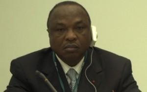 DR Assoa Adou,DNC de Gbagbo Laurent