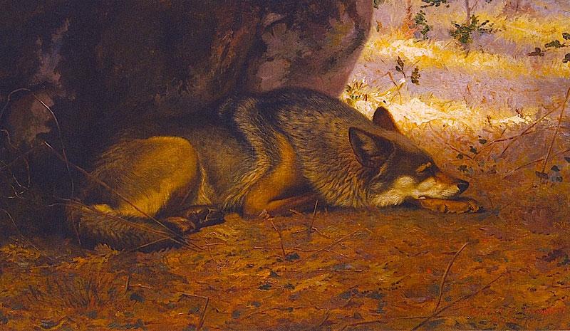 """За картину """"Сплячий вовк"""" Ернест Сетон-Томпсон отримав Паризьку премію у 1891 році."""