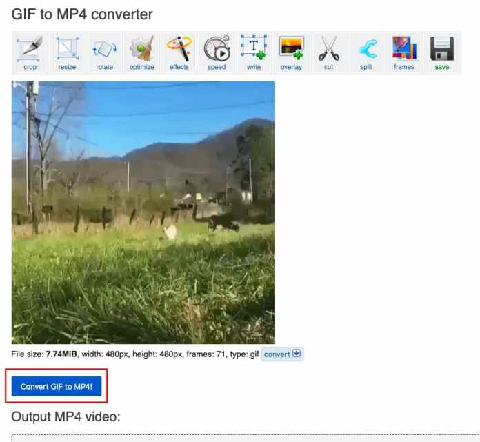 validate conversion gif mp4