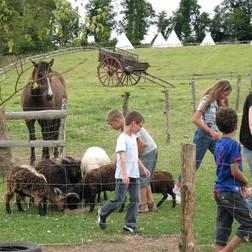 Soins des animaux de la ferme - Tipis d'hôtes Languidic Morbihan