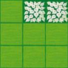 Une des cartes du joueurs blanc avec deux cases de fleur.