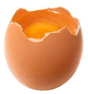 Risultati immagini per uovo