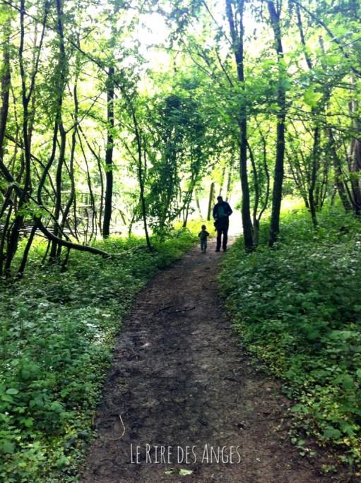 Forêt de Vallin