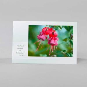 carte notes - éveil printanier 2 - fuchsia rose