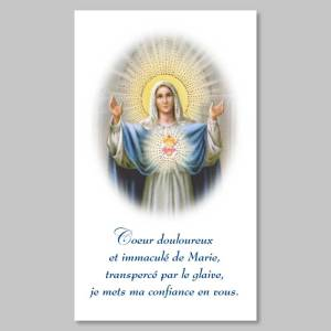 holy picture - immaculate heart of mary
