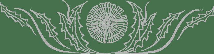 Habillage d'en-tête stylisé pissenlit médiéval