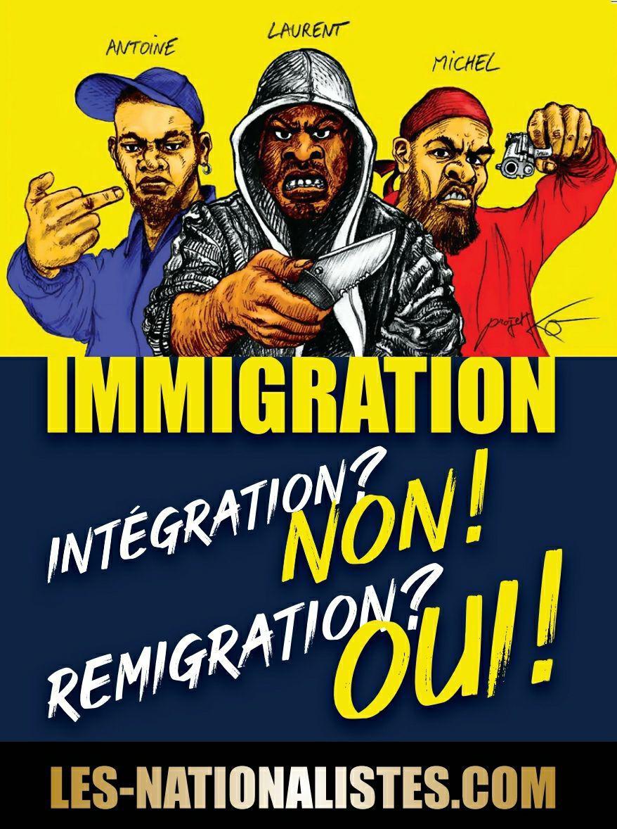 autoc-immigration-integration-remigration