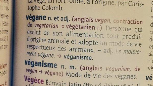 Différence entre végétarien, vegan, végétalien : tout savoir!