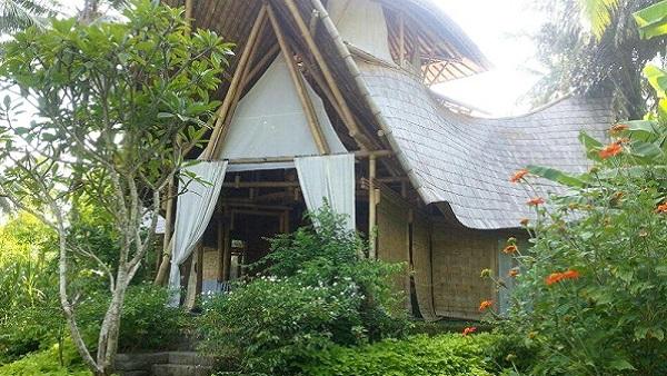 Séjour à Bali : la population, le temps, l'argent, le quotidien