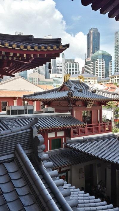 Singapour : Clarke Quay, Fort Canning, . Les toits de Chinatown