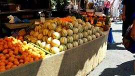 isle sorgue melons