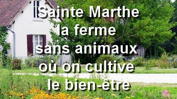 Sainte Marthe, la ferme sans animaux