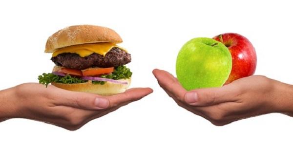 A la rencontre de Quentin webmaster du blog Merci Vegan. Viande vs végétal