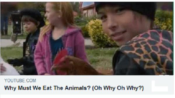 Pourquoi manger les animaux?