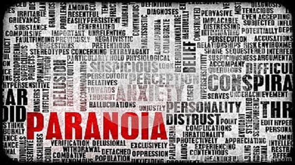 Philosophie et état de crise, chapitre 2 : la montée en pression Paranoïa