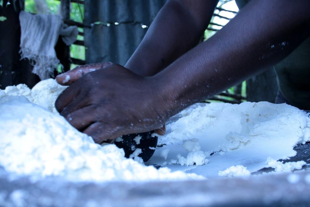 Le manioc est écrasé avec un cylindre en bois