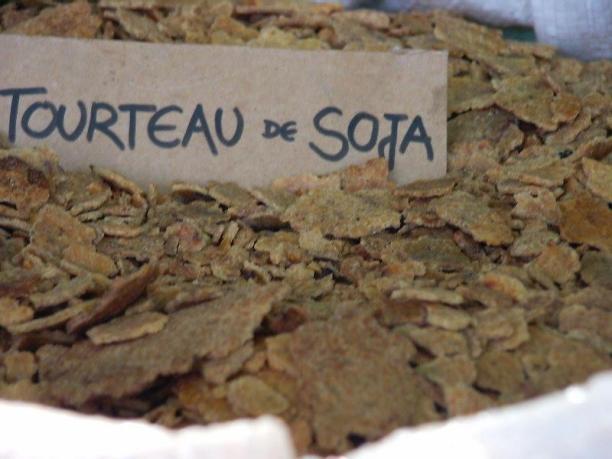 tourteau de soja