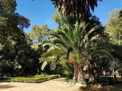 Parc Maria Luisa - Seville