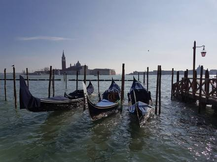 les gondoles devant la lagune place saint marc venise
