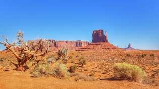 Monument Valley - Point de vue depuis la Valley Drive