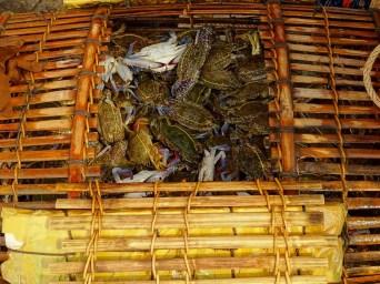 le crabe de Kep
