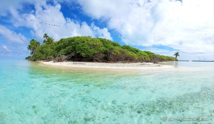 île aux oiseaux à Tetiaroa Polynésie française