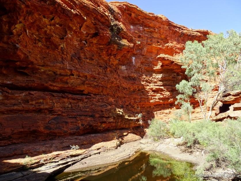 Jardin d'Eden Kings Canyon Rimwalk - Australie