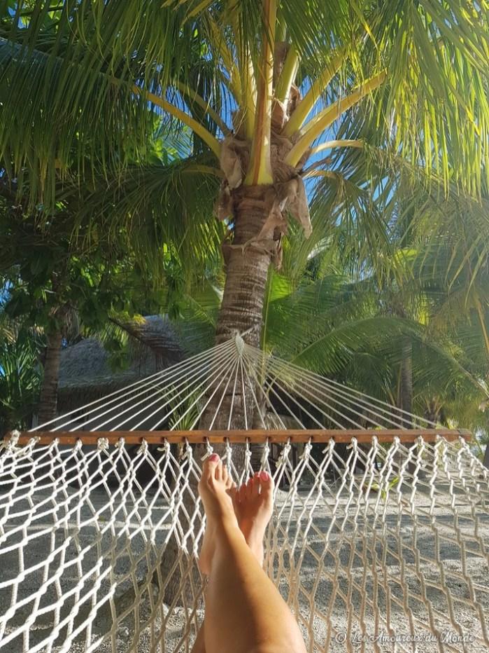 hamac au pied d'un palmier - Polynésie française