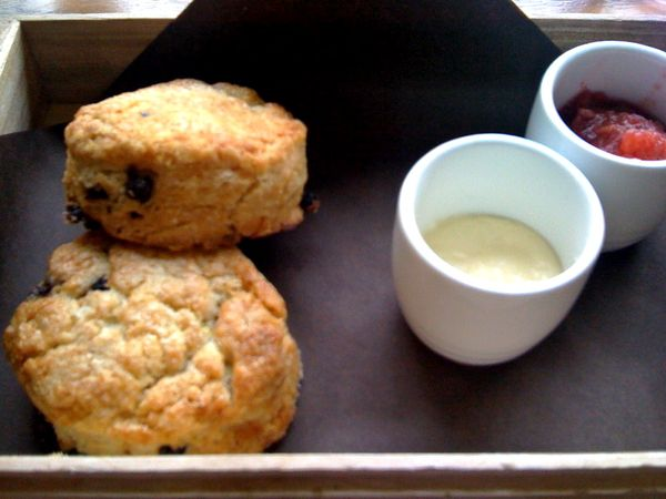mildred temple scones with sweet butter and preserves