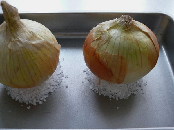 onions sitting on salt cushions