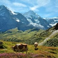 L'Oberland Bernois - paradis de la randonnee famille en Suisse