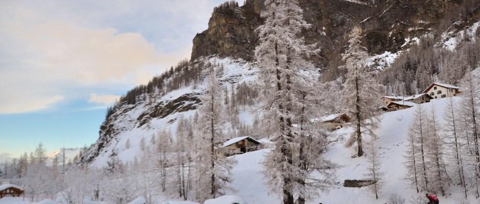 La Grande Odyssee, course de chiens de traineaux de Savoie Mont Blanc