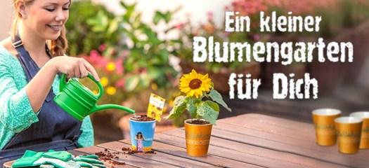 fuer_dich_vielfalt_blumengarten_panorama-c5342952