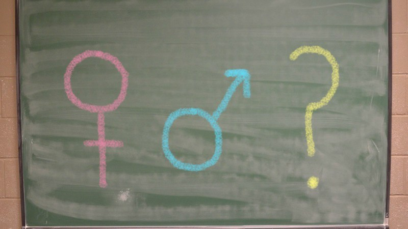 Queer sex education