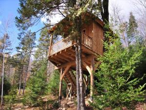 hibou laurentides quebec (1) - Photo cabane le Hibou