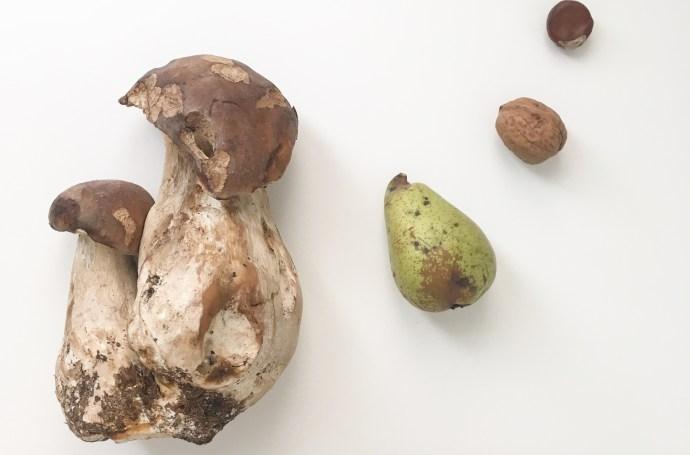 Recette facile automne cèpe persillade