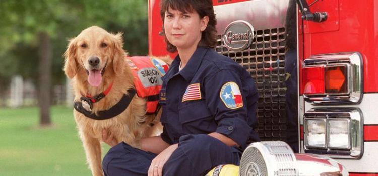 Bretagne, le dernier chien-sauveteur du 11 Septembre, est mort