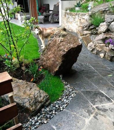 rocher_jardin